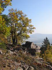 Brdská vrchovina